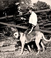 Big Dog with woman at fence