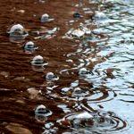 Rainy-Banner